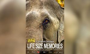 Life Size Memories - Mischung